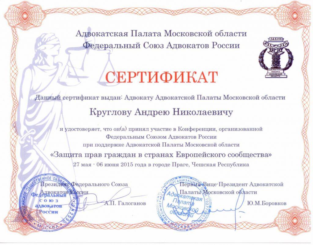 Сертификат Круглова А.Н.